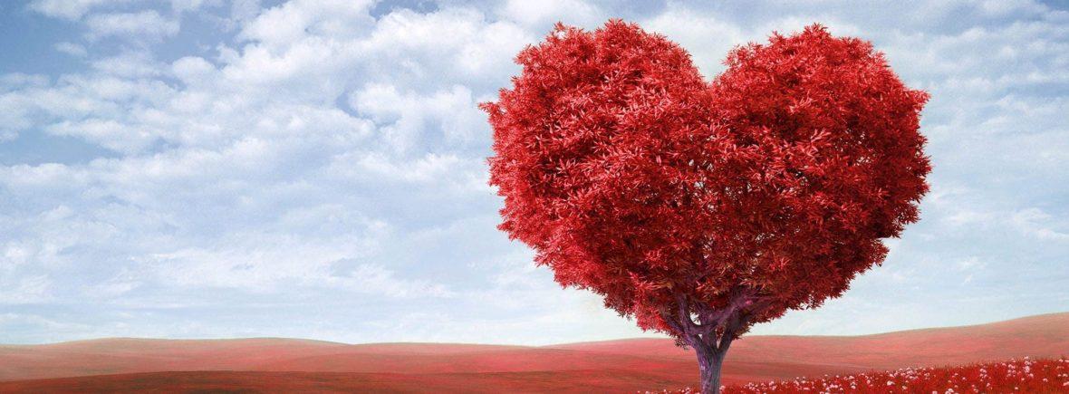 Arbre en forme de coeur feuillage rouge